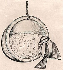 Hanging cocnut bird