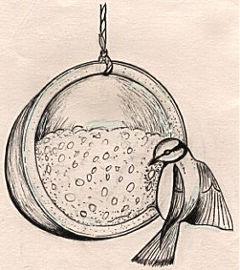Hanging cocnut bird