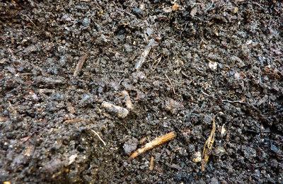 Compost2.content