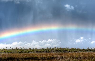 Rainbow.content