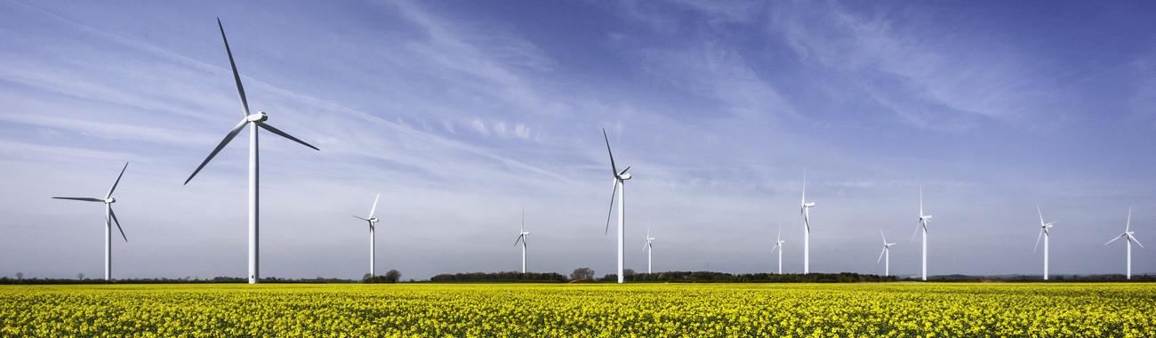 Windturbines.full