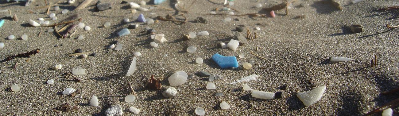Plastic beach.full