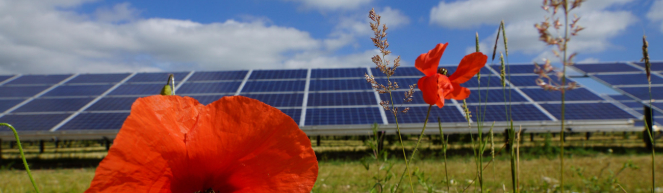 Solarpanels.full