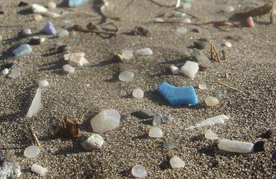 Plastic beach.content