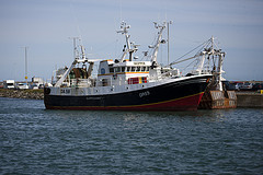 Fishing Fleet © William Murphy CC BY-SA 2.0