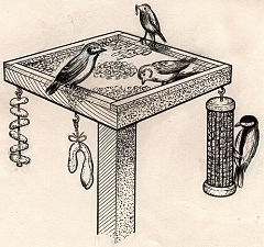 Bird feeding table