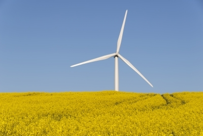 Wind turbine © dan Free Digital Photos