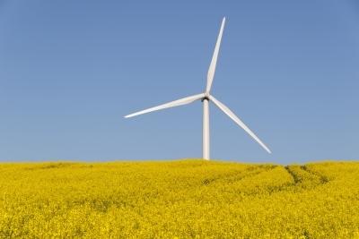 Wind turbine © dan Free Digital Photos